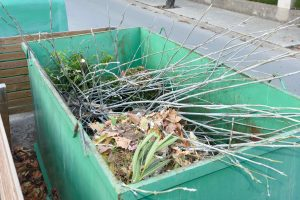We remove rubbish