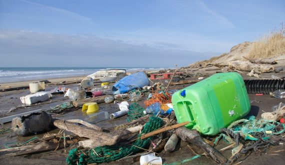 Water and beach pollution