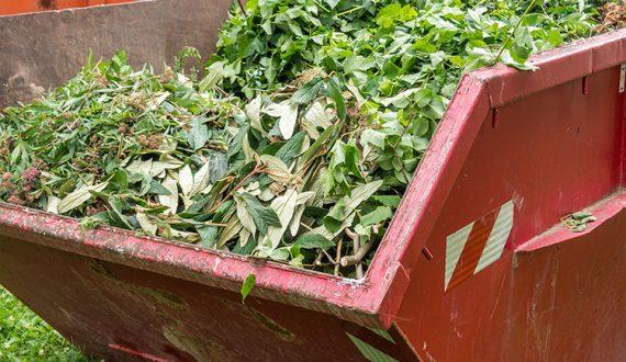 green waste summer skip bin