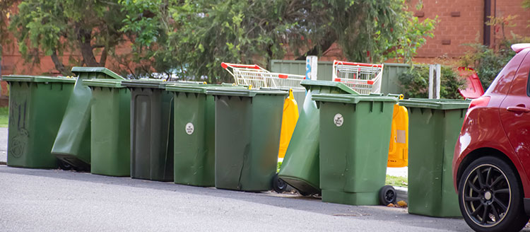 wa bin and waste laws bins on street